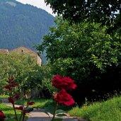 Schloss Auer