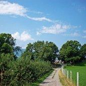 Kastanien in Dorf Tirol