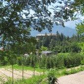 Ein Blick zurück auf Castel Fragsburg und