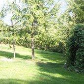 C_labyrinthgartenkraenzel_P9270652.JPG