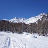 1500321781D-5521-winter-weissbrunn-tal-ulten-weg-103.jpg