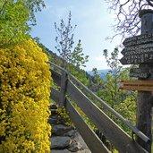 D-0346-zugang-zum-kuenser-waalweg-stufen.jpg