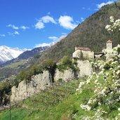 D-1617-Burggrafenamt-Dorf-Tirol-Fruehling-Schloss-Tirol.jpg