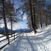 D-3095-winter-wanderweg-vigiljoch-blick-richtung-ultener-berge.jpg