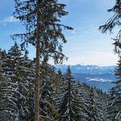 D-3177-winterwald-vigiljoch-dolomitenblick.jpg