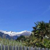 D-5291-passeiertal-palmen-bei-saltaus-camping-schnee-am-jaufenkamm.jpg