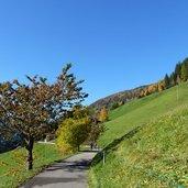 D-9036-ultner-hoefeweg.jpg