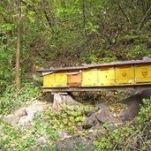 D_3198-burgstall-graf-volkmar-weg-bienenzucht.jpg