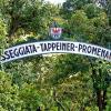 Der Meraner Tappeinerweg oder Tappeiner-Promenade bildet die natürliche Fortsetzung des Algunder Waalweges auf Meraner Stadtgebiet. Er überrascht mit südlicher Flora und grandiosem Panorama auf Meran, einen plätschernden Waal gibt's hier aber nicht - Foto: AT, © Peer