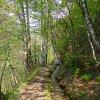 Ende April ist es das typische Frühlingsgrün der jungen Triebe, das die Landschaft prägt. Foto: AT, © Peer