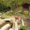So erreichen wir den Beginn des Waals, die Waalfassung. Von hier aus führt ein Waldweg in etwa 15 Minuten zur nahen Longfall-Hütte, ein Tipp für all jene die eine gemütliche Einkehr suchen. Foto: AT, © Peer
