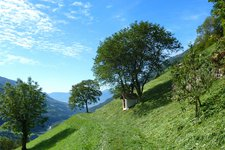 Meraner Höhenweg Etappe 2 Matatz Magdfeld Vernuer