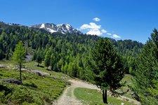Wanderung Aschbach Naturnser Alm