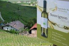 Wein, Riesling 2010