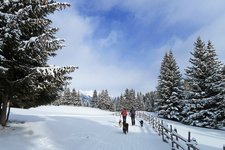 Winterwandern Escursione invernale