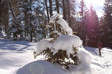 Schneeschuhwandern Kreuzjöchl 2012