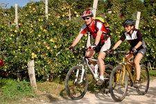 Radfahren Meraner Land