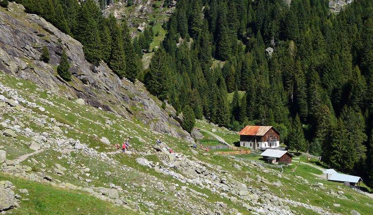Meraner Höhenweg Leiter Alm - Giggelberg, Foto: AT, © Peer