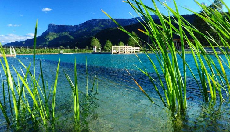 Piscina naturale di gargazzone gargazzone nuotare a for Piscina naturale