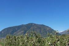 Apfelblüte am Maiser Waalweg